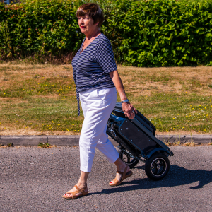 Folding Scooters